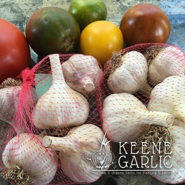 Keene Garlic Bulbs