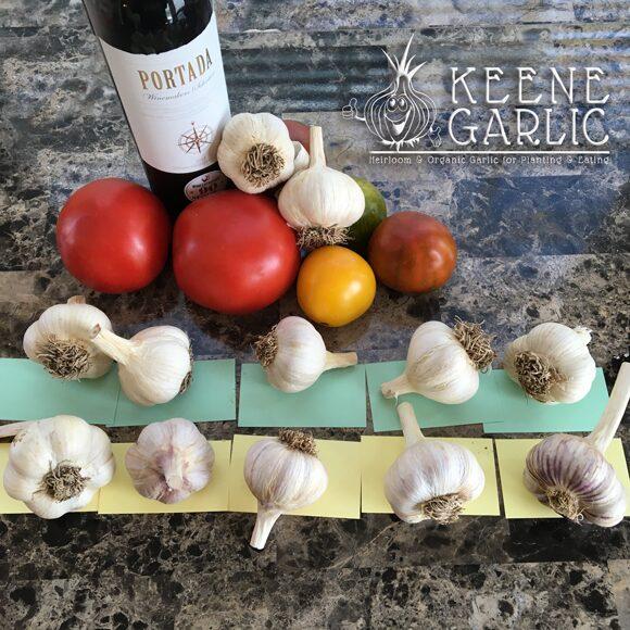Keene Garlic Bulbs