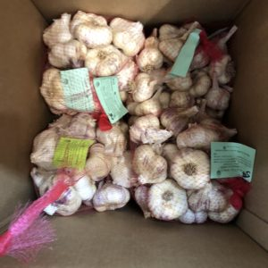 Large Garlic Package