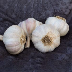 Amish Rocambole Naturally Grown Garlic Bulbs