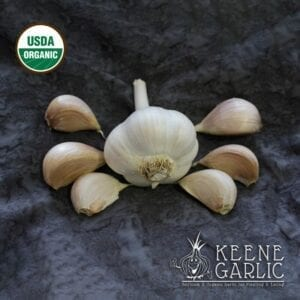 Armenian Organic Garlic Bulbs