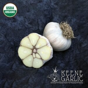 Asian Tempest Organic Garlic