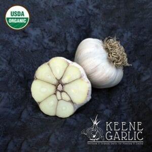 Russian Inferno Certified Organic Garlic Bulbs
