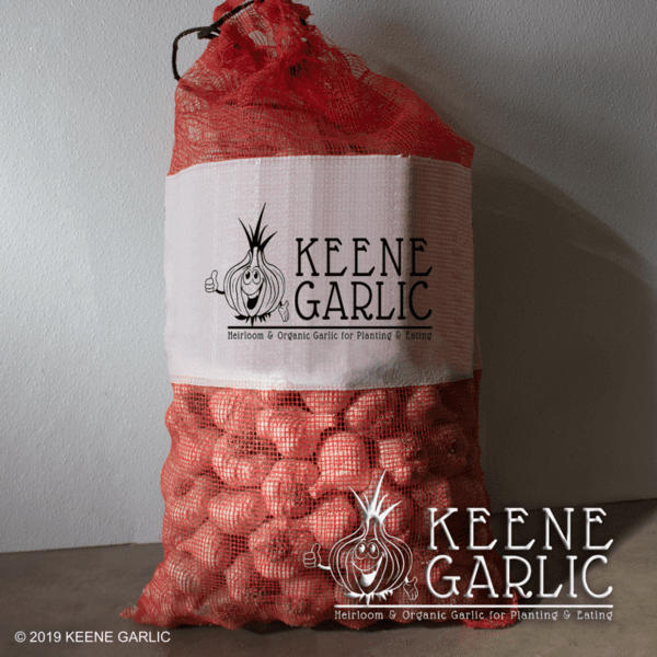 Bulk Garlic Keene Garlic