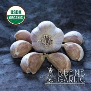 Georgian Crystal Organic Garlic Bulbs