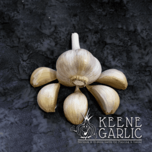 Georgian Fire Keene Garlic Bulbs