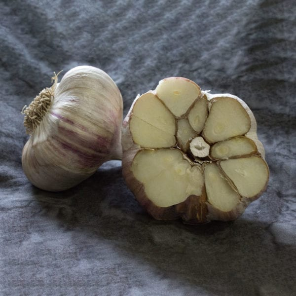 German Red Keene Garlic Bulbs