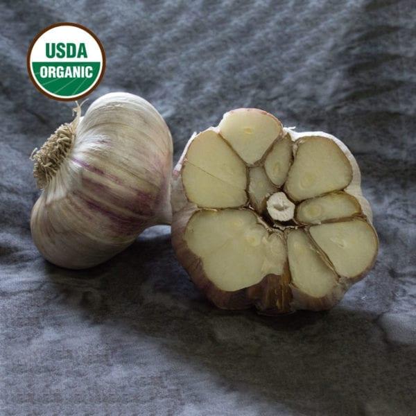 German Red Organics Keene Garlic Bulbs