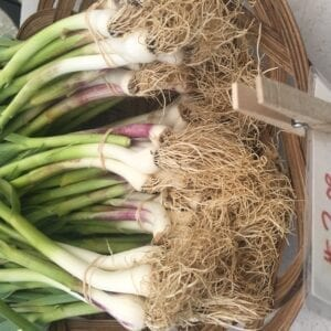 Green Garlic at Farmers Market