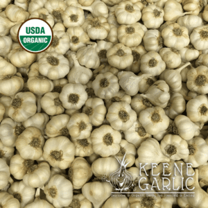 Lorz Italian Garlic bulbs