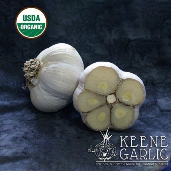Majestic Organics Keene Garlic Bulbs