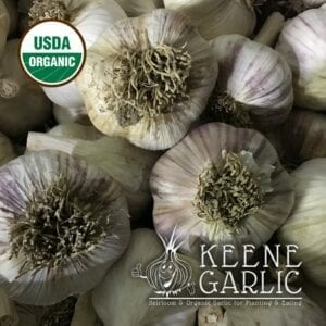 Metechi Organics Keene Garlic Bulbs