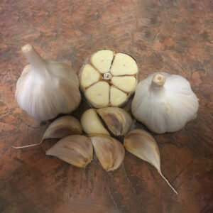 Music Organic Keene Garlic