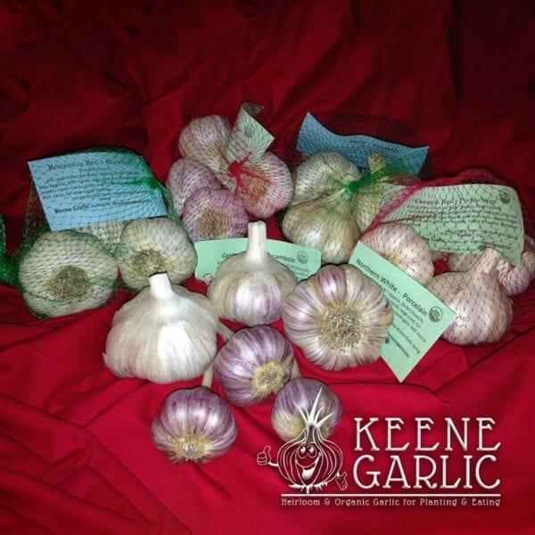 Variety Pack Keene Garlic
