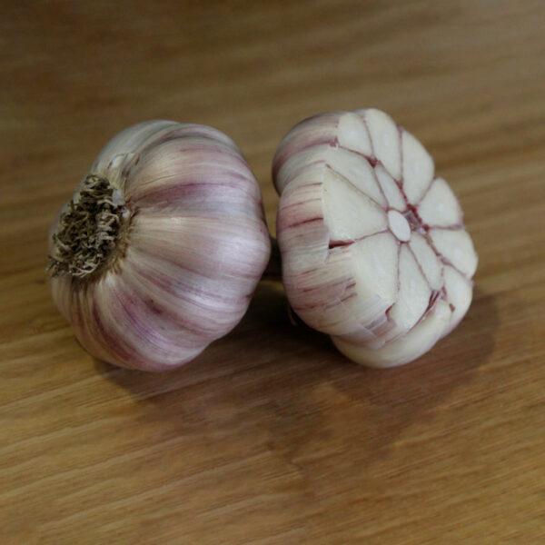 Persian Star Certified Organic Garlic Bulbs