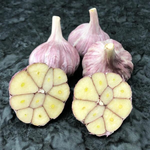 Purple Glazer Certified Organic Garlic Bulbs