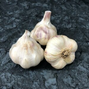 Transylvanian Keene Garlic