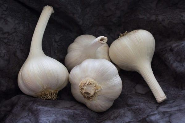 Armenian Naturally Grown Garlic Bulbs