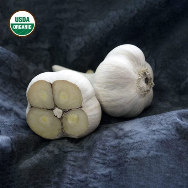 Armenian Certified Organic Garlic Bulbs