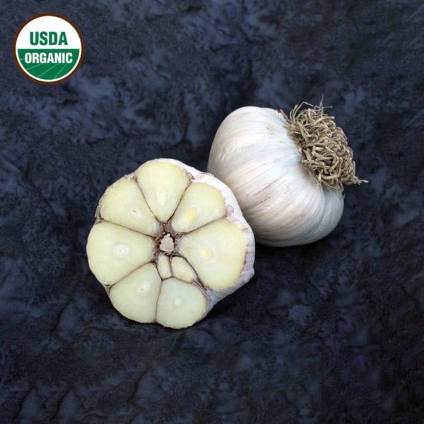 Asian Tempest Certified Organic Garlic Bulbs