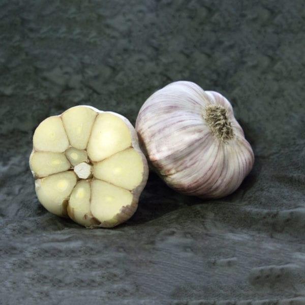 Chesnok Red Naturally Grown Garlic Bulbs