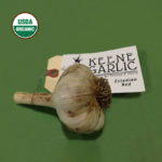 Estonian Red Certified Organic Garlic Bulbs