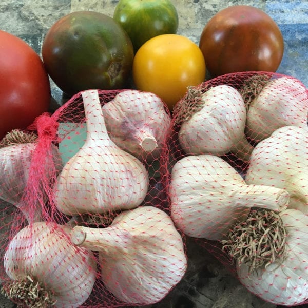 1st Time Garlic Growers Package