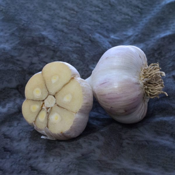 German Extra Hardy Naturally Grown Garlic Bulbs