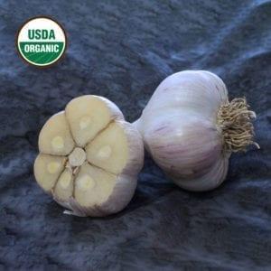 German Extra Hardy Certified Organic Garlic Bulbs