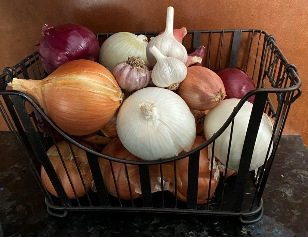 Organic Onion Collection Keene Garlic