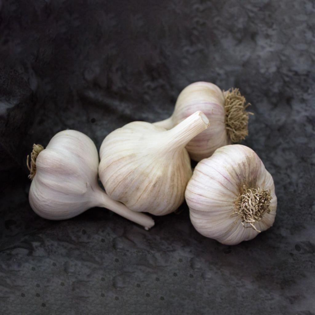 Featured Garlic Varieties