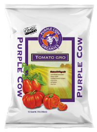 Tomato Grow Purple Cow
