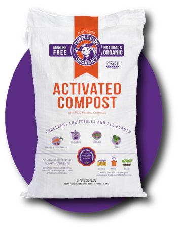 Activated Compost Purple Cow